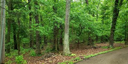 Lots And Land for sale in 19445 Babler Forest Road, Chesterfield, MO, 63005