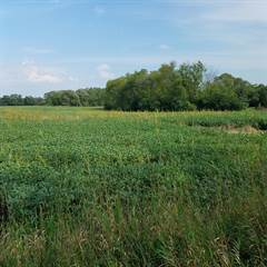 Farm And Agriculture for sale in Lt0 W Oakwood Rd, Franklin, WI, 53132