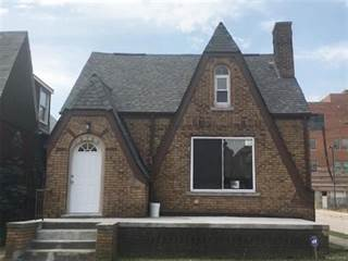 Single Family for sale in 13700 MAPLERIDGE Street, Detroit, MI, 48205