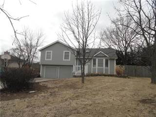 Single Family for sale in 15500 Terry Avenue, Belton, MO, 64012
