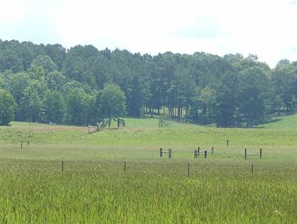 Lots And Land for sale in 324 COUNTY RD 164, Louin, MS, 39338