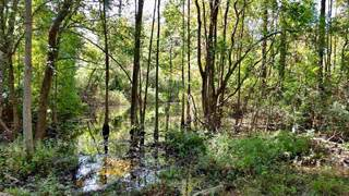 Land for sale in 000 CR 706, Buna, TX, 77612