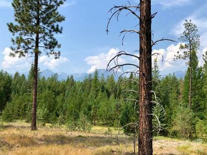 Lots And Land for sale in 39850 US Hwy 2, Libby, MT, 59923