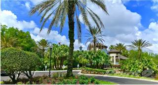 Apartment for rent in Falls at New Tampa - 1 Bedroom, Tampa, FL, 33637