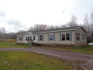 Single Family for sale in 33717 Townline, Ontonagon, MI, 49953