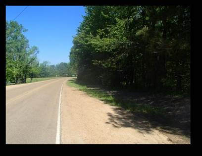 Lots And Land for sale in Hwy. 35, Vaiden, MS, 39176