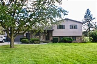 Single Family for sale in 10123 McEnrue Drive, Swartz Creek, MI, 48473