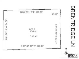 Land for sale in 6633  BRENTRIDGE LANE, Lambertville, MI, 48144