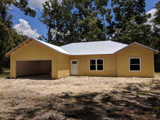 Single Family for sale in 14271 NW 78th AVE, Trenton, FL, 32693