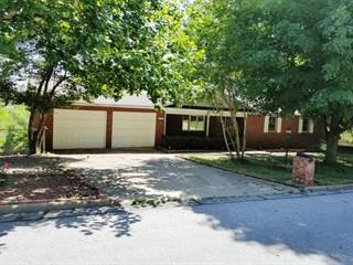 Single Family for sale in 1217 Speer Drive, Harrison, AR, 72601