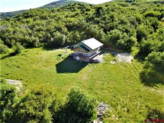 Single Family for sale in 10745 Lot 75 Glade Ranch Rd. 29.8, Dolores, CO, 81320