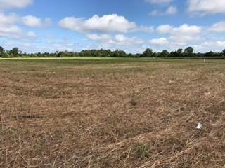 Lots And Land for sale in 000 HWY 3 HWY, Yazoo City, MS, 39194