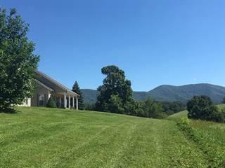 Single Family for sale in 603 Stone's Chapel Rd, Elk Creek, VA, 24326