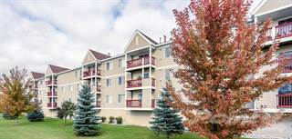 Apartment for rent in SummerField Roseau Highrise - Two Bed Two Bath A, MN, 56751