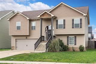 Single Family for sale in 3756 Silver Fox Lane, Clarksville, TN, 37040