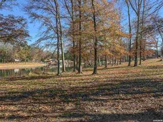 Single Family for sale in 203 GIBBINS Lot 9, Piney, AR, 71913