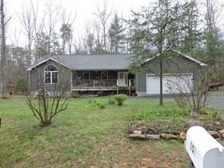 Single Family for sale in 157 PLECKER DR, Millboro, VA, 24460