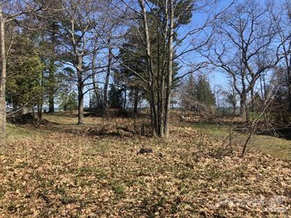 Lots And Land for sale in 00 Driftwood Lane, Port Austin, MI, 48467