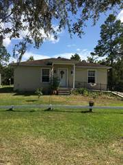 Single Family for sale in 147 Ruth Lane, Mayo, FL, 32066