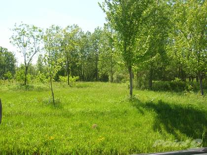 Lots And Land for sale in 0 Maple Rd, Newstead Town, NY, 14001