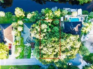 Land for sale in DAMEN LANE, Port Richey, FL, 34668