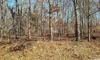Land for sale in 1000 Wells Road 1000, Laurel, NY, 11948