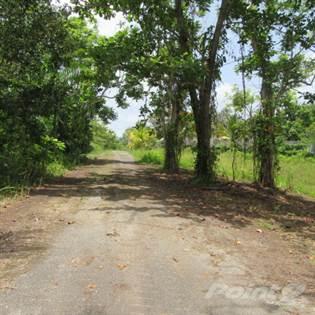Lots And Land for sale in PR 455 INTERIOR CIBAO, Cibao, PR, 00685