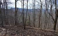 Photo of BURNT LEAF-20+ ACRES, 31020, Twiggs county, GA
