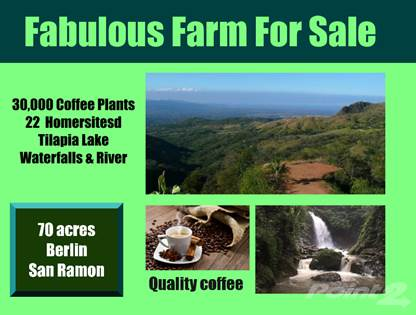 Lots And Land for sale in 12 great Homesites - 30,000 Prime Coffee Plants -Trout Lake Lege Waterfall - River Tails, San Ramon, Alajuela