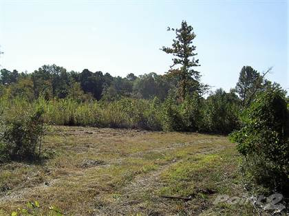 Lots And Land for sale in 181 LR 27, Ashdown, AR, 71822