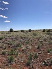 Farm And Agriculture for sale in 185 Westwood Ranch Lot 185, Ash Fork, AZ, 86320