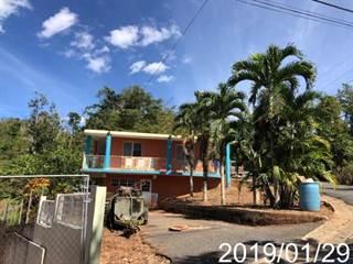 Single Family for sale in 0 PR119 KM 44.9 LOT 110 BARRIO GUACIO, Anon, PR, 00780