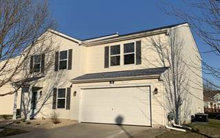 Single Family for sale in 335 Falling Leaf Way, Mascoutah, IL, 62258