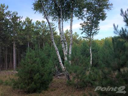Lots And Land for sale in V/L Fox Farm Road, Manistee, MI, 49660