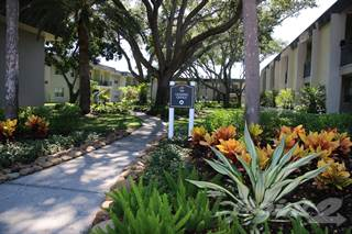Apartment for rent in The Villas at Flagler Pointe, St. Petersburg, FL, 33712