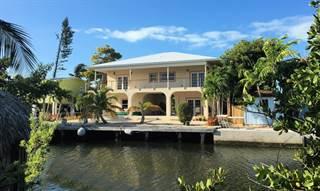 Single Family for sale in 125 Venetian Drive, Lower Matecumbe, FL, 33036