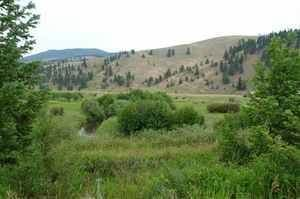 Farm And Agriculture for sale in Tbd Wineglass Grazing Ranch, Helmville, MT, 59843