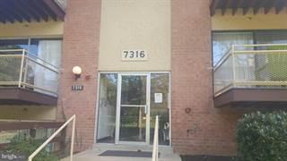 Condo for sale in 7316 LEE HWY #204, Falls Church, VA, 22046