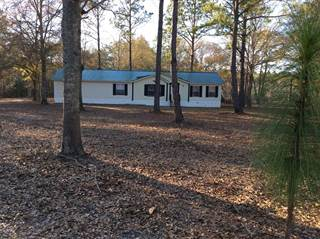 Residential Property for sale in 61 Cannon Lane, Mcrae-Helena, GA, 31055
