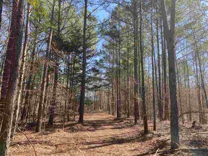 Lots And Land for sale in HOWARD RD, Lexington, MS, 39095