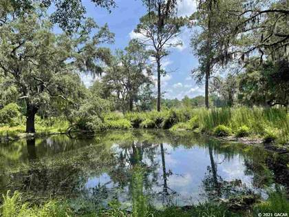 Farm And Agriculture for sale in 00 192nd Street, Wellborn, FL, 32094