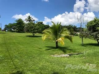 Residential Property for sale in A la venta 3 solares residenciales, San Sebastian, PR, 00685