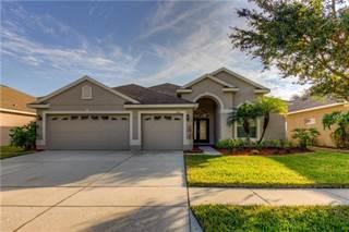 Single Family for sale in 1634 MIRA LAGO CIRCLE, Ruskin, FL, 33570
