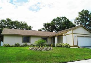 Single Family for sale in 4989 CARDINAL TRAIL, Palm Harbor, FL, 34683
