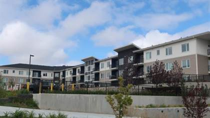 Apartments For Rent In Northwest Calgary Point2