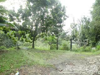 Land for sale in BARRIO CANOVANILLAS, CARR. 857, KM. 4.9, Carolina, PR, 00987