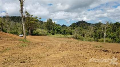 Lots And Land for sale in Bo Cercadillo Carr 715 Km 5.1, Cayey, PR, 00736