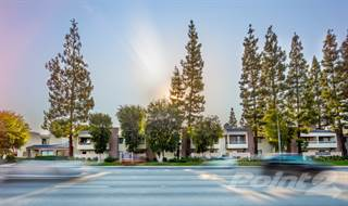 Apartment for rent in NMS West Hills, Los Angeles, CA, 91304