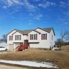Single Family for sale in 204 Meadow, Orangeville, IL, 61060