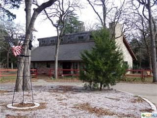 Single Family for sale in 1039 Phillips Street, Lexington, TX, 78947